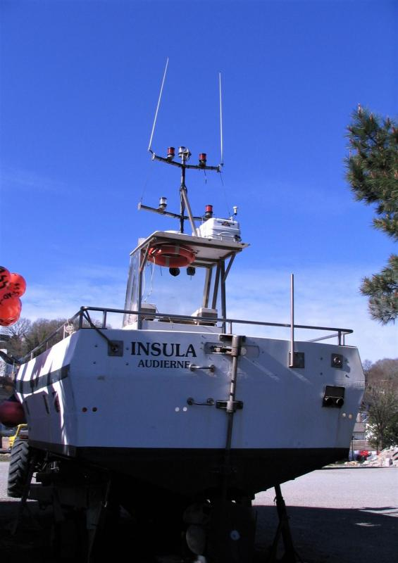 Insula a